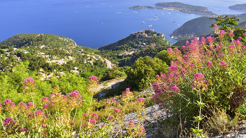 Scenic view from a hillside overlooking a village and superyacht marina in the South of France