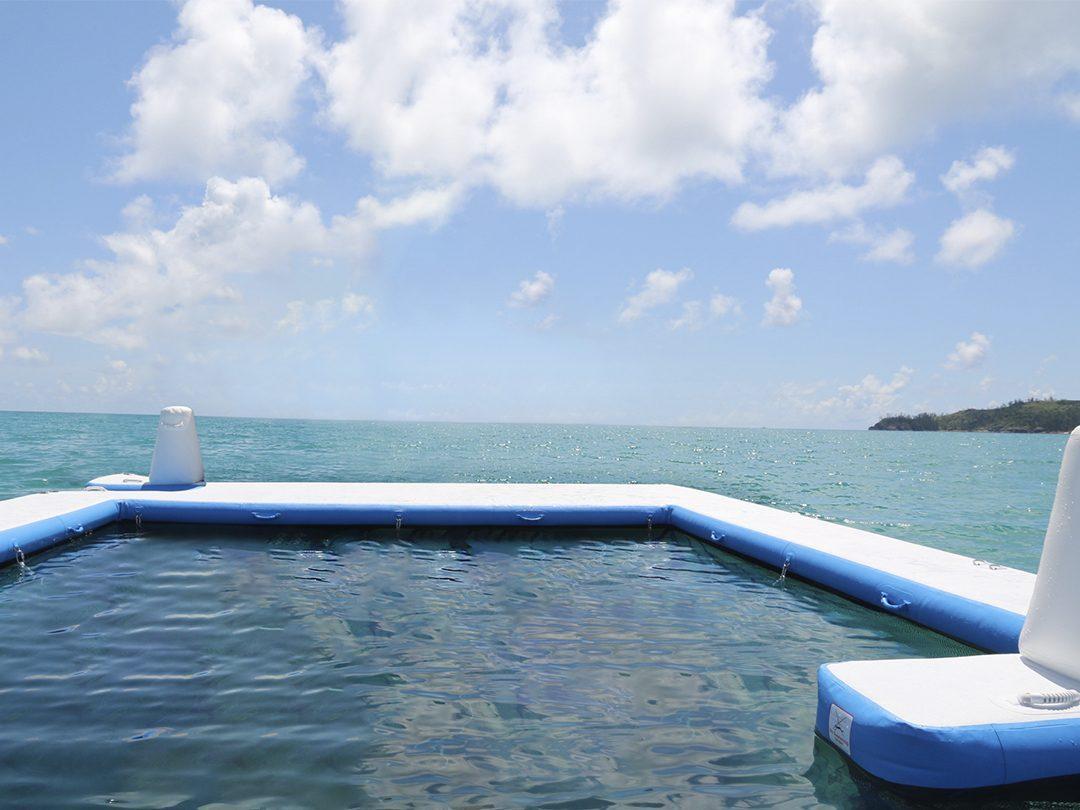 Netted Sea Pool in the ocean
